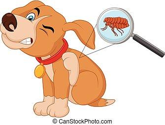 puce, vecteur, infesté, chien, illustration