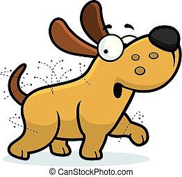puces, dessin animé, chien