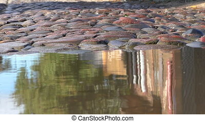 Puddle cobblestone street abstract - Vintage houses...