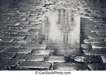 Puddle on the street