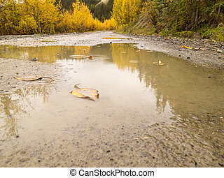 Puddles of rain water on rural dirt road in fall