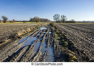 Puddles on a muddy road, plowed field and blue sky