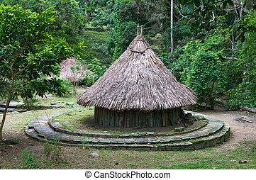 pueblito, krajowy, umiejscawiać, park, kolumbia, tayrona, archaeologic