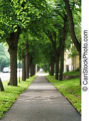 pueblo, callejón, con, árboles verdes, plano de fondo