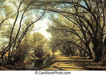 puente, árboles