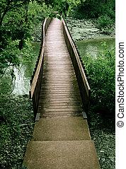 puente, afuera, de, el, bosque