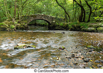 puente, bosque, corriente