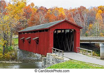 puente, catarata, cubierto, follaje, otoño