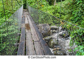 puente colgante, en, el, sendero de excursión, sendero, los,...