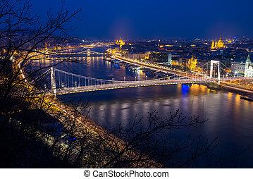 puente, elisabeth