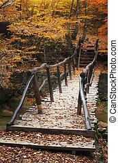puente, en, bosque de otoño