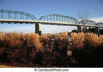 puente, n, hierbas