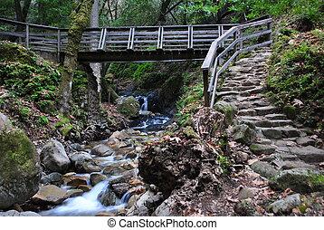 puente peatonal, piedra, pasos, y, corriente