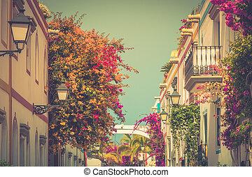 Puerto,  De, colorido,  mogan