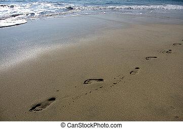 puerto, encombrements, plage, escondido