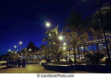 Puerto Morelos night palm trees Mayan riviera - Puerto...