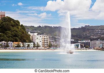 puerto, nueva zelandia, wellington