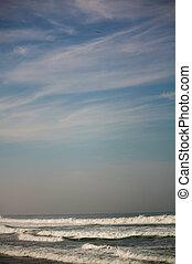 puerto, plage, sur, ciel, vagues, zicatela, aigle, escondido