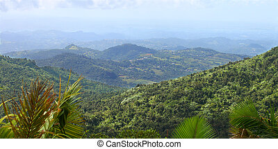 Puerto Rican Rainforest - View of the Puerto Rican landscape...