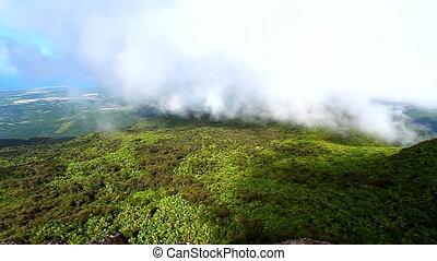Puerto Rico El Yunque Forest
