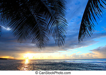 Puerto Rico Sunset - Beautiful sunset framed by palm fronds ...