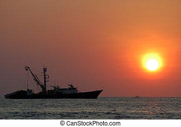 puerto, sur, coucher soleil, mer, escondido