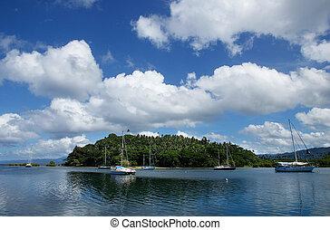 puerto, vanua, isla, savusavu, levu, fiji