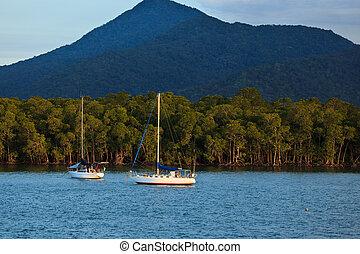 puerto, veleros, cairns, australia, salida del sol