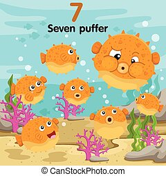 puffer, zeven, illustrator, getal