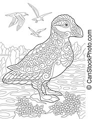 Puffin seabird and seagulls - Coloring page of puffin, a...