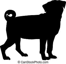 pug 犬