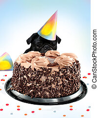 Pug birthday cake - Black colored Pug peeking behind a...