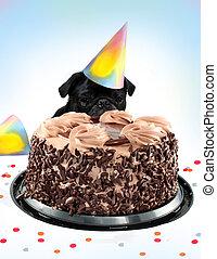 Pug birthday cake - Black colored Pug peeking behind a...