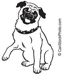 pug black white