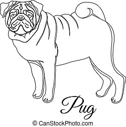 Pug dog outline