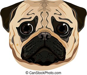 cute pug face vector illustration