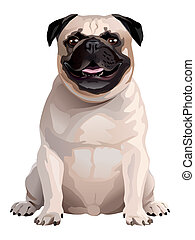 Pug. Illustration.