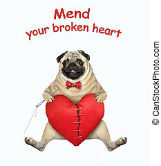 Pug mends broken heart 2