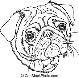 pug vector linear illustration on a white background.