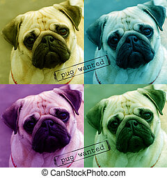 pug wanted poster - colorful collage poster with four...
