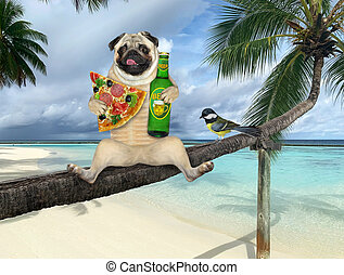 Pug with beer on palm tree