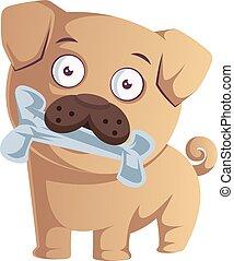 Pug with bone, illustration, vector on white background.