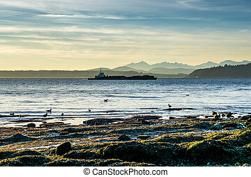 Puget Sound Barge - A barge moves across the Puget Sound in ...
