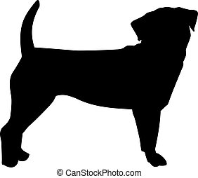 Puggle in black with silhouette