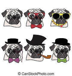 Pugs hipsters presented with vary accessories ( hats ,...