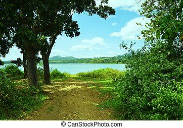 pulangi, フィリピン, 川, 写真