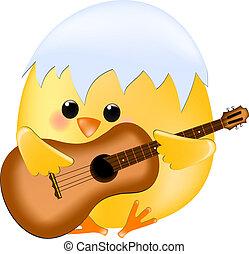 pulcino, con, chitarra