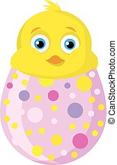 pulcino, e, egg.