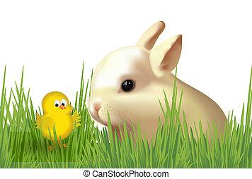 pulcino, pasqua, coniglietto