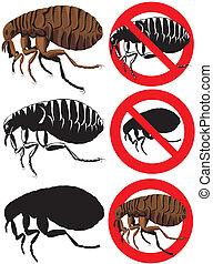 pulga, advertencia, -, señales